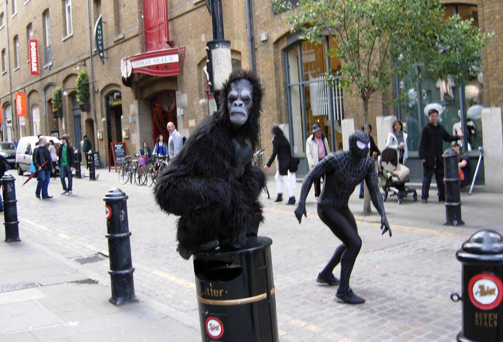 Gorilla on a bollard